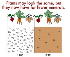 minerals-missing_70